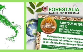 Forestalia 2017 Piacenza - gassificazione